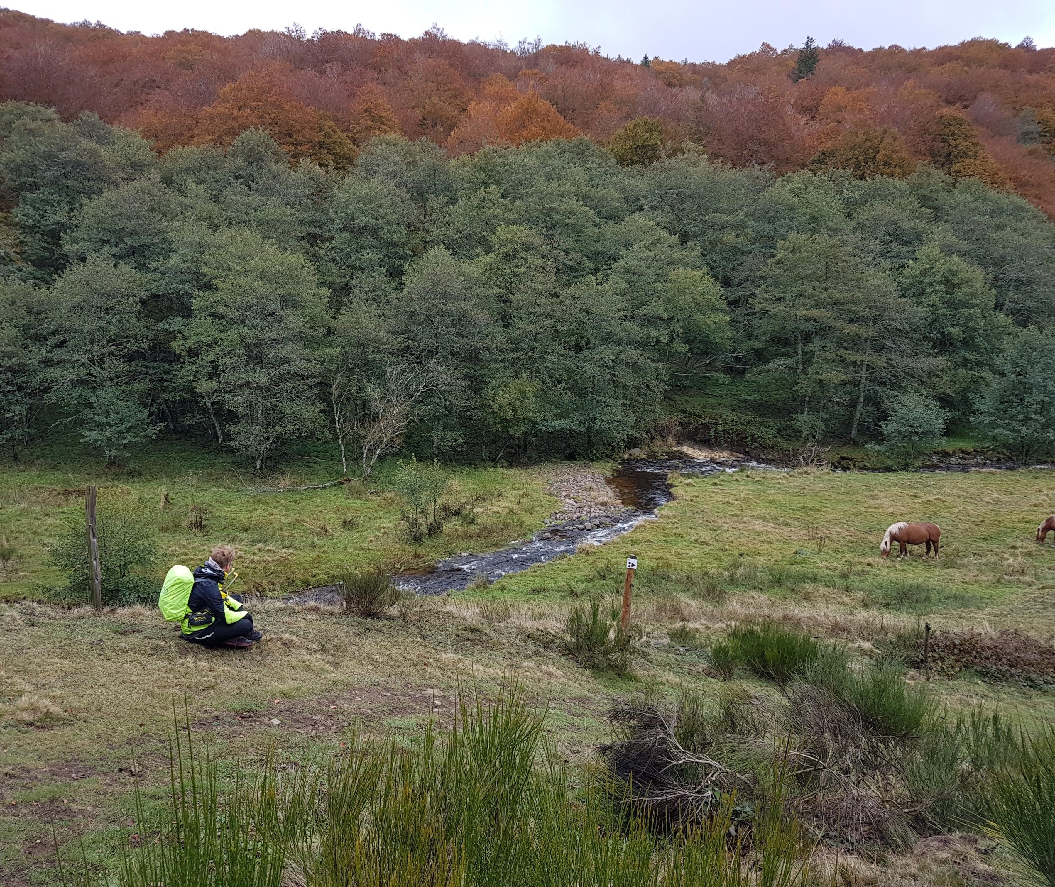 Beauté de la plaine et de ses couleurs d'automne